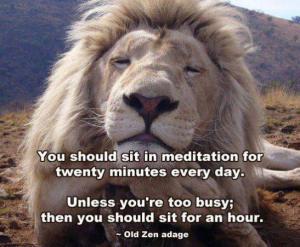 lion-meditating